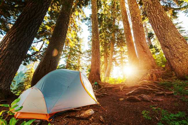 The Best Camping in Maryland | Beartooth Anthony
